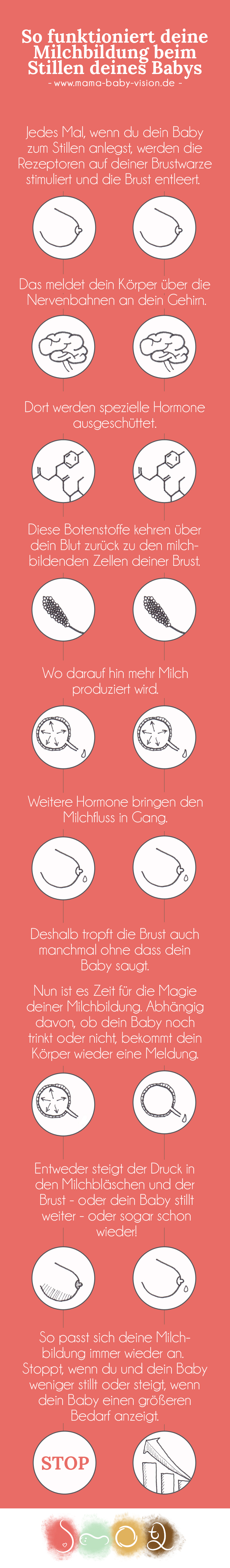 milchproduktion-infografik